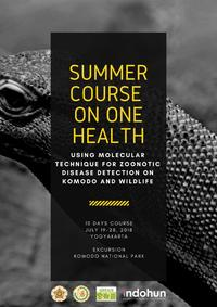 CALL FOR SUMMER COURSE © One Health Collaborating Center UGM, Indonesia