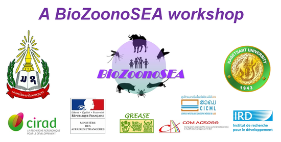 Dissertation paper zoonosis papers service